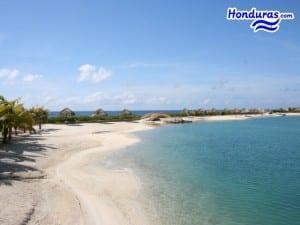 Parrot-Tree-Roatan-Honduras-050-Beach